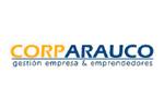 Corp Arauco